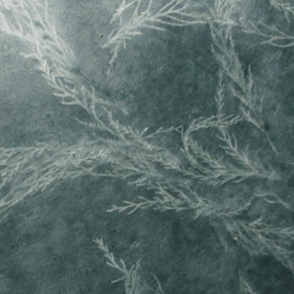 Solarprint loktapapier 75x50 cm