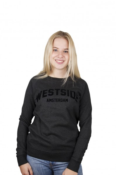 Westside Crew Neck Sweater Suede