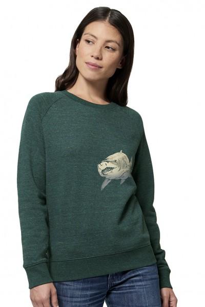 Shark Sweater By Lou Santos