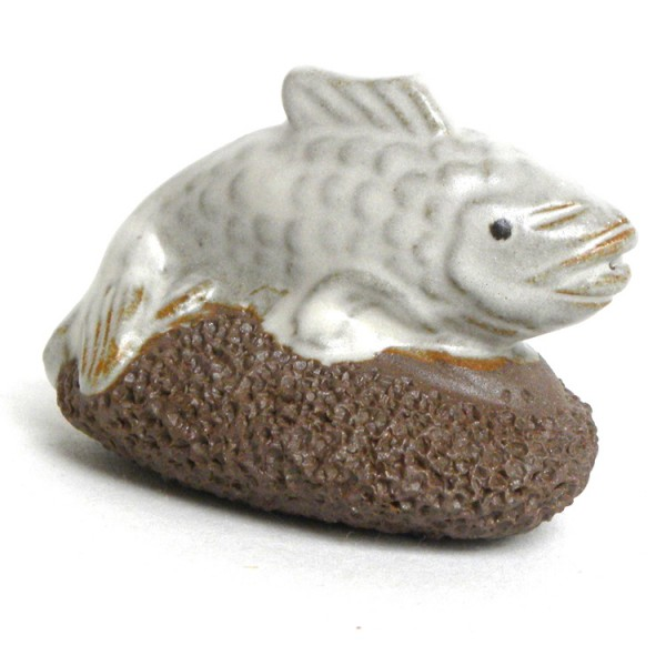 Scrubsteen Fish